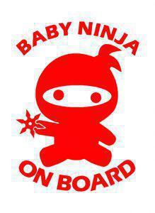 Ninja on board